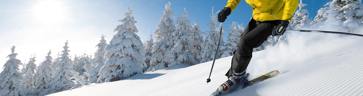 sreen-ski