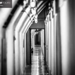 obiranje-mandarin-2018-025